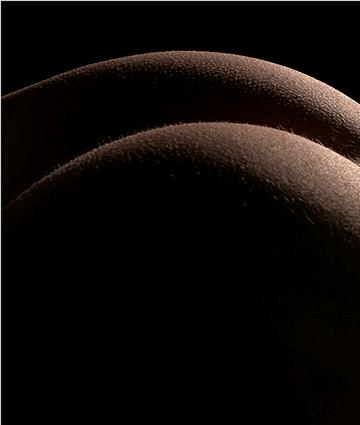 """Buttocks"" by Paulo Brandao (Creative Commons)"