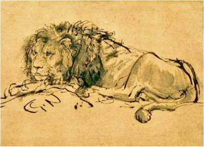 A Lion Lying Down, ca. 1650