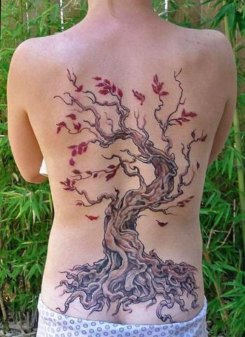 Tree Tattoo, 2006